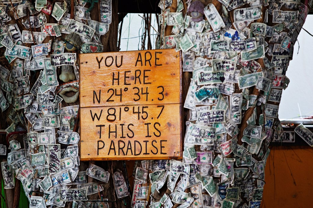 Stock Photo: 4355-1759 Sign on a money tree along Duval Street in Key West. Duval Street is a carnival that lasts until dawn, similar to Bourbon Street. Duval Street runs north and south from the Gulf of Mexico to the Atlantic Ocean. At the southwest end is the southernmost point in the continental United States.