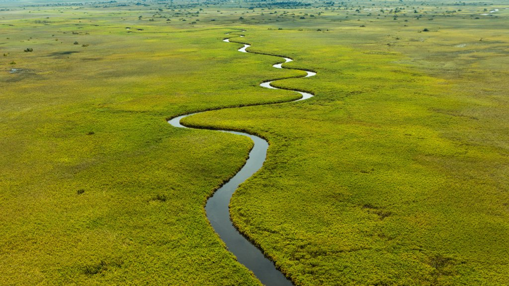 Stock Photo: 4355-1895 The Okavango Delta, in Botswana, is the world's largest inland delta.  The area was once part of Lake Makgadikgadi, an ancient lake that mostly dried up by the early Holocene. The Okavango Delta is produced by seasonal flooding. The Okavango river drains the summer (January-February)