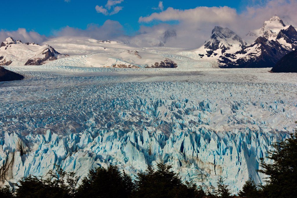 Stock Photo: 4355-2237 The Perito Moreno Glacier in Patagonia.