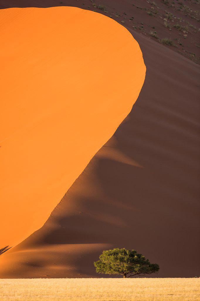 Stock Photo: 4355-2424 Namibia, Namib-Naukluft National Park, Soussusvlei, Sand dunes