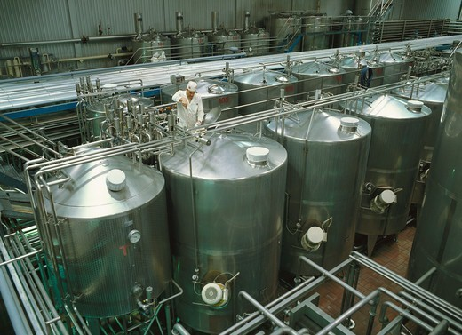 Factory with incubation tanks in which yogurt is matured by adding cultures : Stock Photo