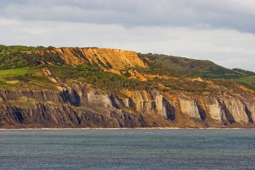 The West Dorset Cliffs : Stock Photo
