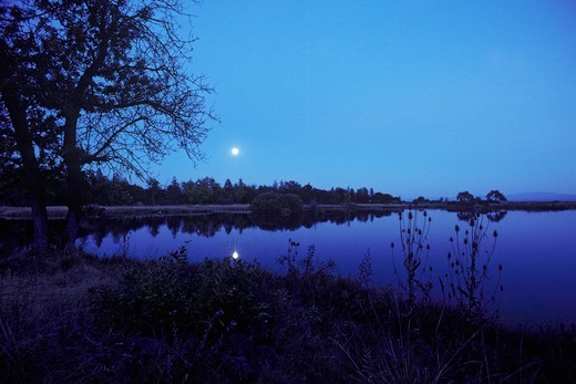 Moonrise, Big Lake, CA, USA.  The Fall River Valley was the heartland of the Pit River Indians.  Now a part of the Ahjumawi Lava Springs State Park.  As the name implies, the water rises to the surface through lava tubes which connect to The Lava Beds National Monument, some fifty miles to the north. : Stock Photo