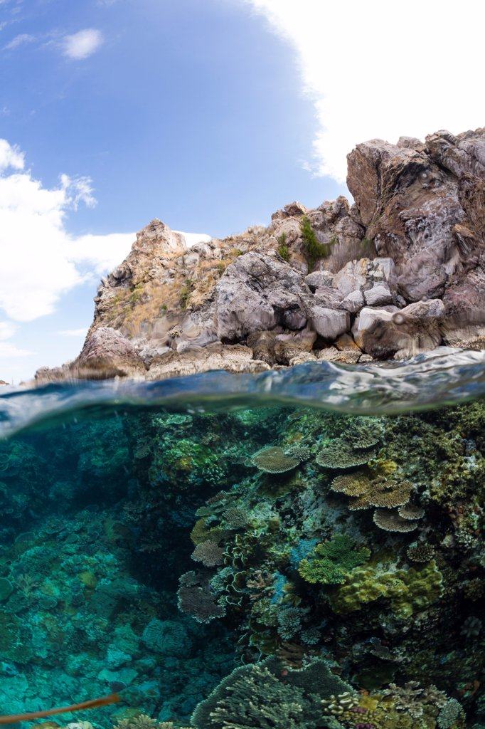 Indonesia, Bali, Over-under of shallow water coral covered outcropping : Stock Photo