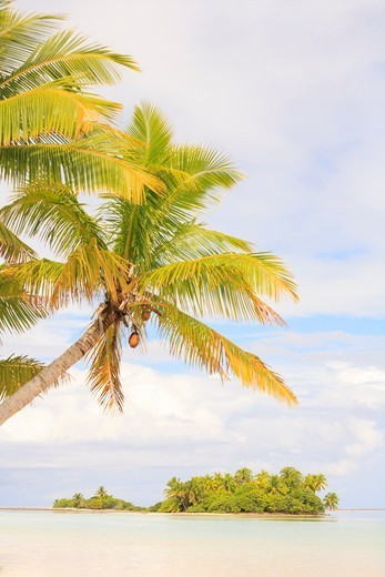 Stock Photo: 4372-826 Tiny picnic island near South End, Fakarava Island, Tuamotus Group, French Polynesia, South Pacific