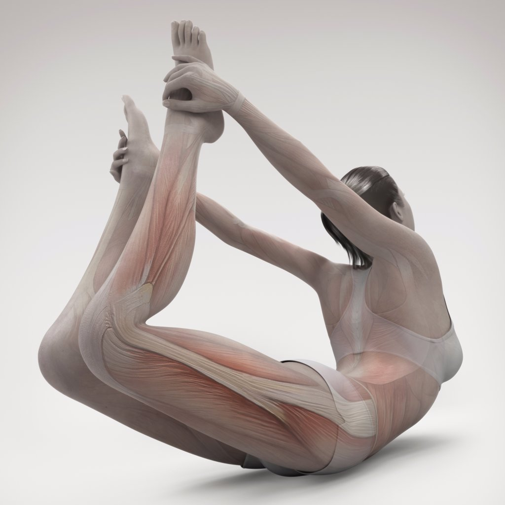 Stock Photo: 4378-2220 Musculature layered over a female body in bow pose showing the activity of certain muscle groups in this particular yoga posture.