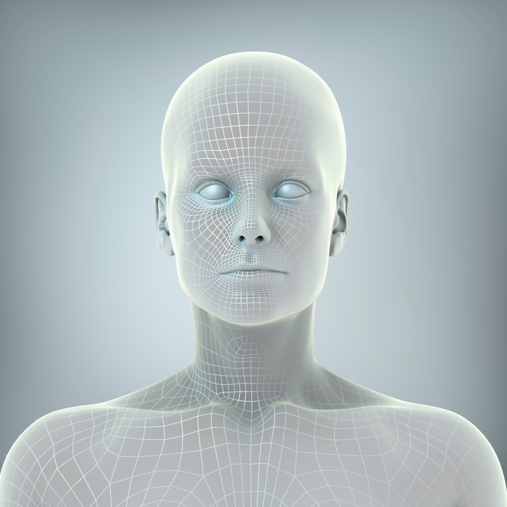 Wire frame model layered over a face to represent a digital human being. : Stock Photo