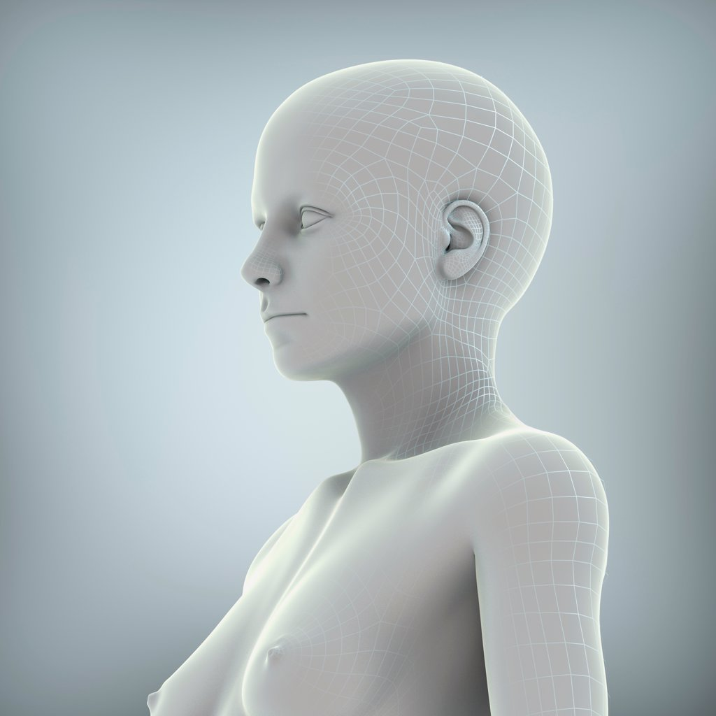 Stock Photo: 4378-2649 Wire frame model layered over a body to represent a digital human being.