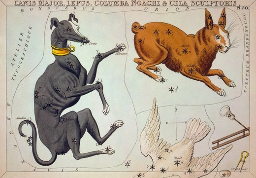Stock Photo: 4388-301 Constellation Card of  Canis Major and Others