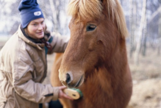 Stock Photo: 4400R-1150 A woman and an icelandic horse, Skane, Sweden.