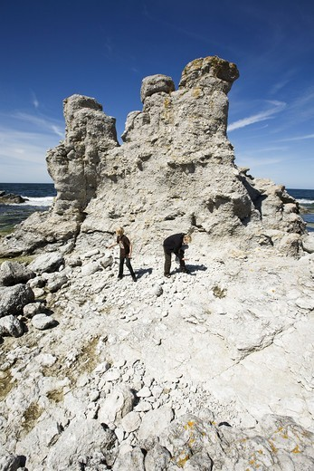 Raukar on the island of Faro, Gotland, Sweden. : Stock Photo