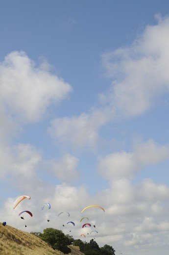 Hang-gliding, Skane, Sweden. : Stock Photo