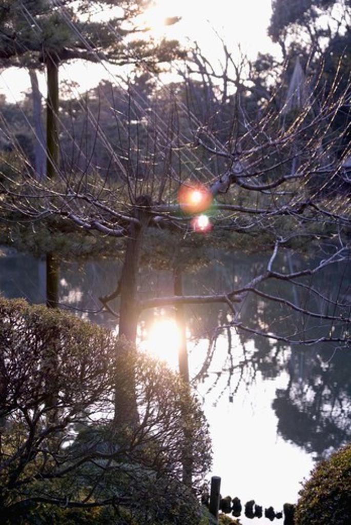 Stock Photo: 4400R-3735 A park, Japan.