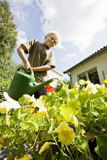 Stock Photo: 4400R-4162 Boy watering plants in garden