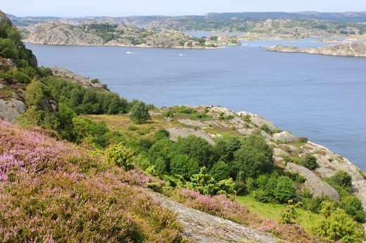 A view over archipelago, Sweden. : Stock Photo