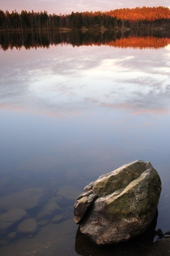 Stock Photo: 4401R-10512 A lake at dawn, Sweden.
