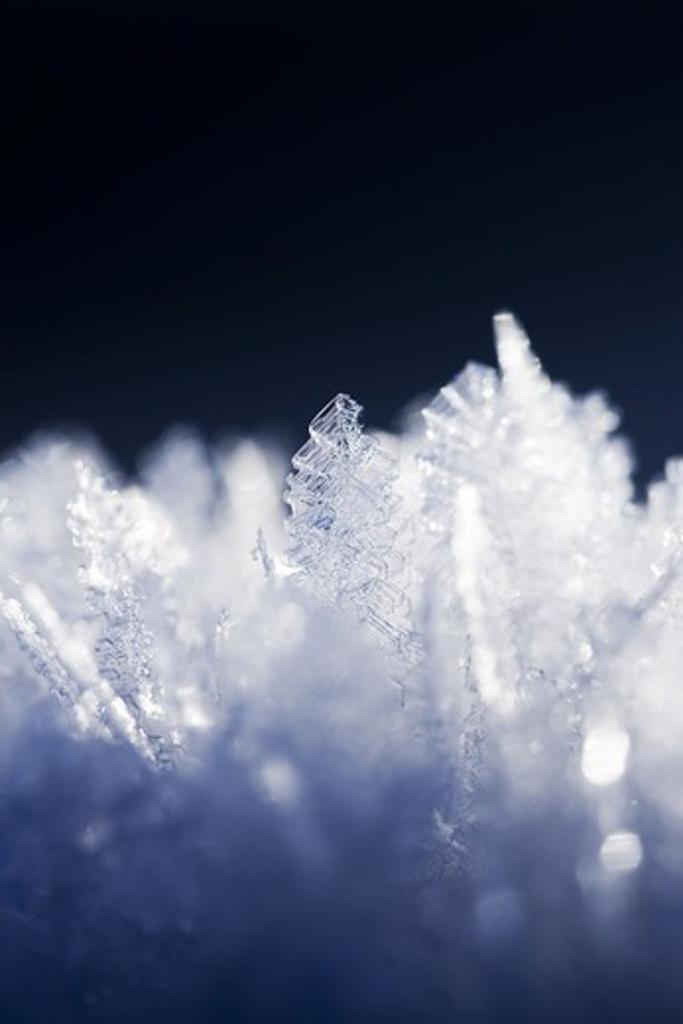 Stock Photo: 4401R-11155 Scandinavian Peninsula, Sweden, Skåne, Småland, View of snowflakes, close-up