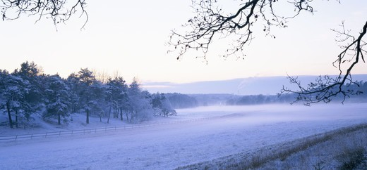 Stock Photo: 4401R-11168 Arable land in the winter