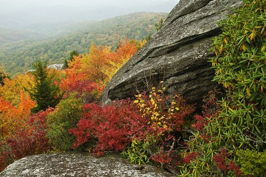 Stock Photo: 4401R-12110 North America, USA, North Carolina, View of rock formation in autumn, elevated view