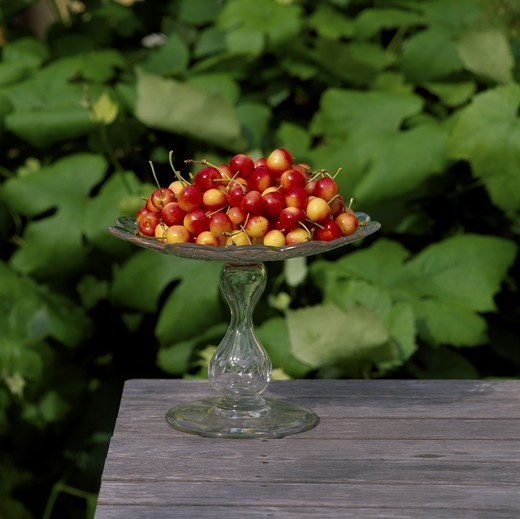 Tray of cherries : Stock Photo