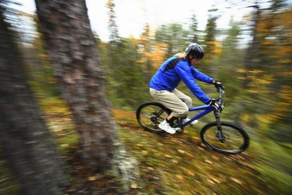 A mountainbike ride, Finland. : Stock Photo