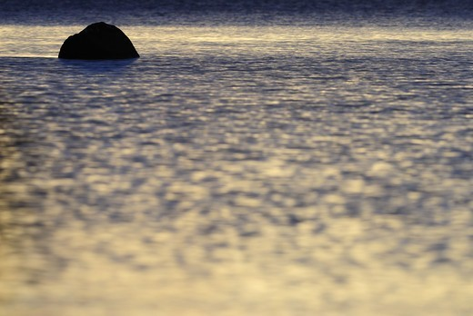 Stock Photo: 4401R-5690 A stone in water, Sweden.