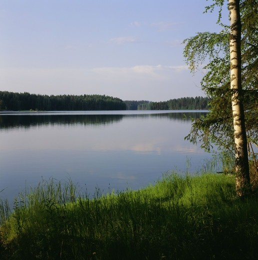 Stock Photo: 4401R-7317 A lake, Finland.