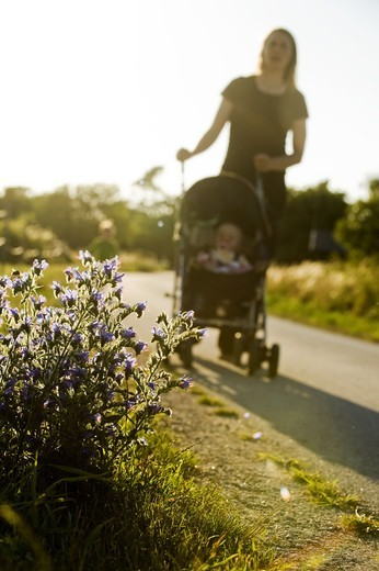 Stock Photo: 4401R-9945 A woman with a stroller against the light, Sweden.