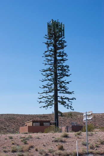 Stock Photo: 4404-1454 USA, Nevada, Las Vegas, Tree-shaped mobile phone mast near Las Vegas