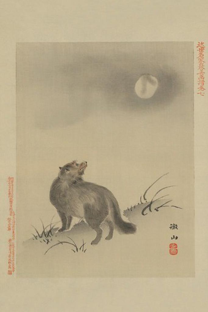 Stock Photo: 4408-14142 Fox, Japanese Prints - Nature