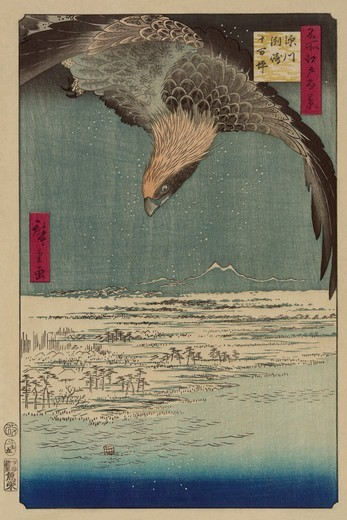 Stock Photo: 4408-14159 Hawk flying above a snowy landscape along the coastline., Japanese Prints - Nature