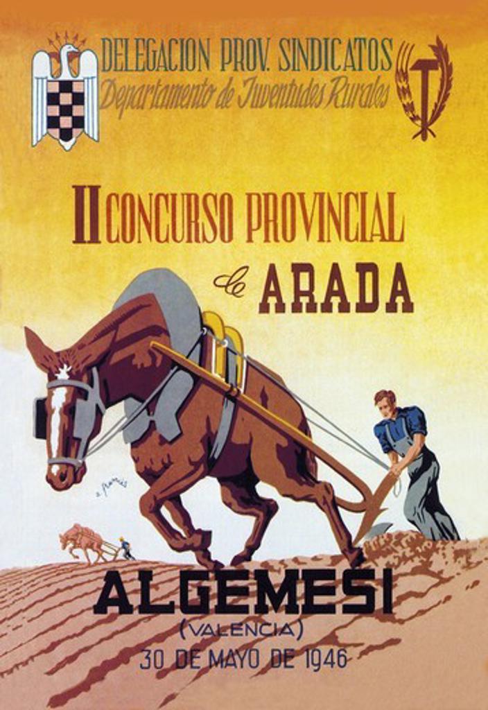 Concurso Provincial, Farming : Stock Photo