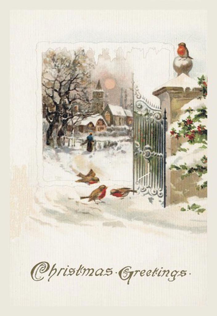 Stock Photo: 4408-4704 Christmas Robins, Christmas & Santa