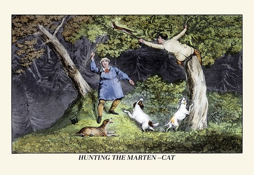 Stock Photo: 4408-6373 Hunting the Marten-Cat, Dogs