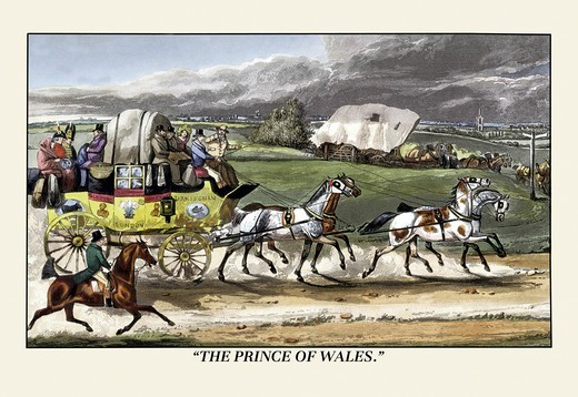Stock Photo: 4408-6377 Prince of Wales Rides on a Horse-Drawn Carriage, Dogs