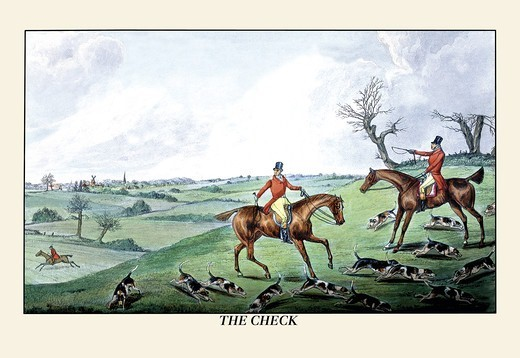 Stock Photo: 4408-6388 Fox Hunters and Hounds in an Open Field, Dogs
