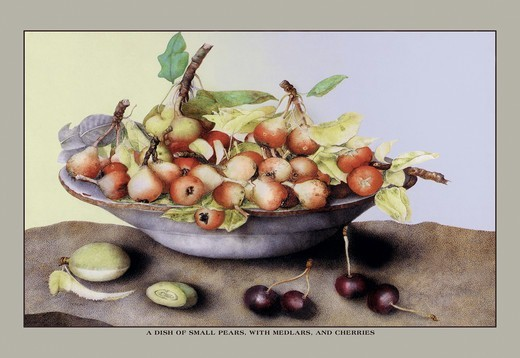 Dish of Small Pears With Medlars and Cherries, Giovanna Garzoni : Stock Photo