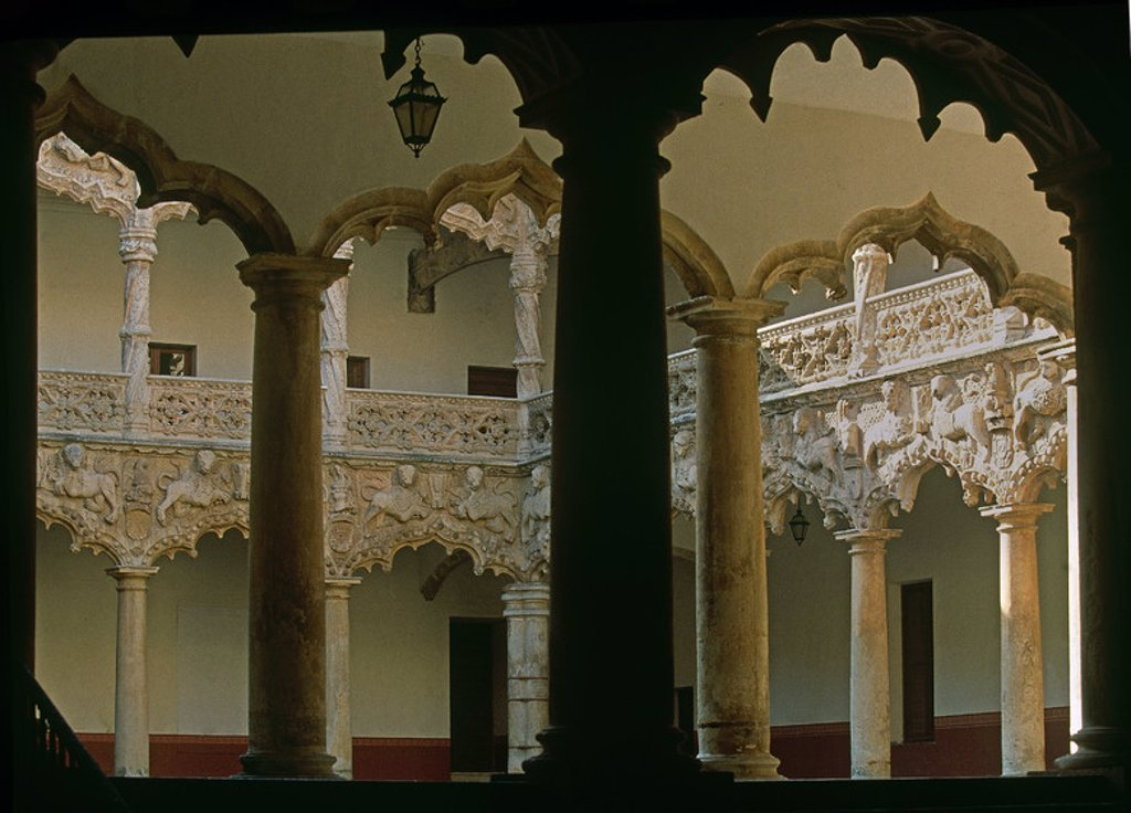 Stock Photo: 4409-23784 INTERIOR - PATIO DE LOS LEONES - S XV - ESTILO REYES CATOLICOS. Author: GUAS, JUAN. Location: PALACIO DEL INFANTADO / MUSEO DE BELLAS ARTES, SPAIN.