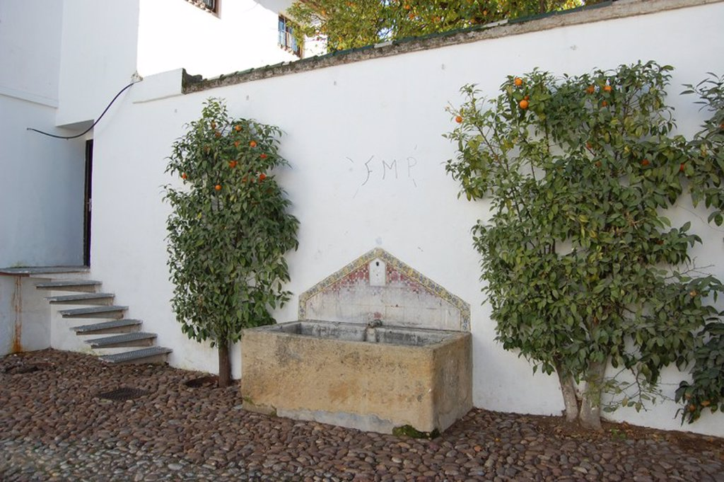 Stock Photo: 4409-29558 Palacio de los Villalones, tambiŽn conocido como el Palacio del Orive, arquitectura civil cordobesa renacentista, construido por Hernan Ruiz II en 1560. Sede de la concejalia de cultura. Cordoba.