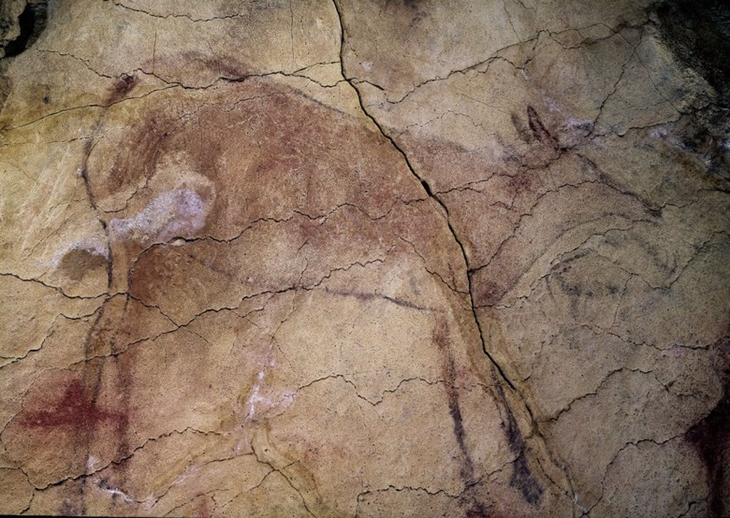 Stock Photo: 4409-2982 Doe painted in red, outline painted in black. Upper Paleolithic period. 150,000 B.C.. Cantabrian prehistory. Santillana del mar, Altamira caves . Cantabria. Location: CUEVAS DE ALTAMIRA, SANTILLANA DEL MAR, SPAIN.