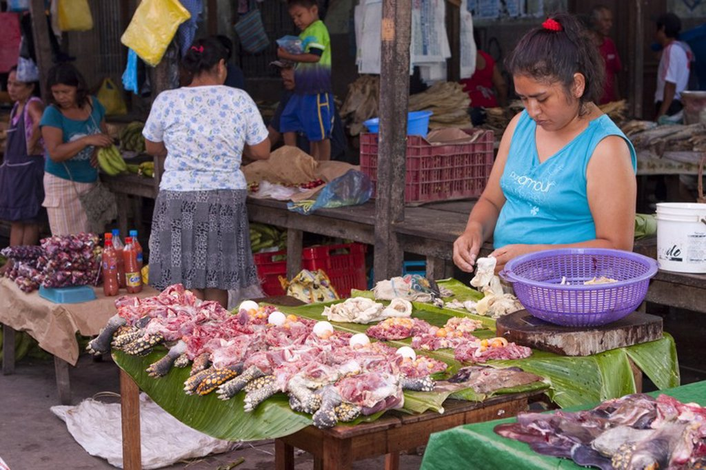 Stock Photo: 4409-31411 Selling turtle meat. Market of Belen. Iquitos. Loreto. Peru.