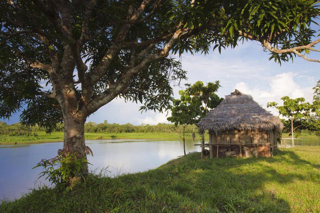20 de Enero Native Community. Yanayacu river. Pacaya Samiria National Reserve. Amazon basin. Loreto. Peru. : Stock Photo