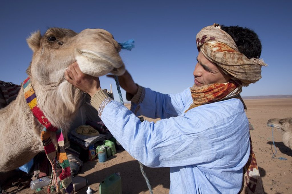 Stock Photo: 4409-32351 Young bereber with your dromedary in Erg Lihoudi desert. M'Hamid. Morocco.
