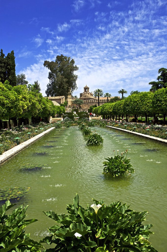 Stock Photo: 4409-38225 Moorish style gardens of The Christian Kings Alcazar. 14th century. Cordoba. Andalusia. Spain.