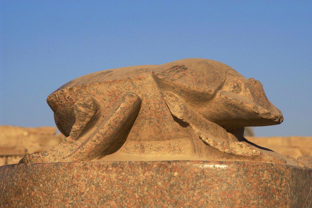 Egyptian Art. Sacred beetle. Giant statue, built by Pharaoh Amenhotep III (Imenhetep III). Represents Khepri, god of sunrise. Sacred Lake. Temple of Karnak. Around Luxor. Dynasty XVIII. New Kingdom. : Stock Photo