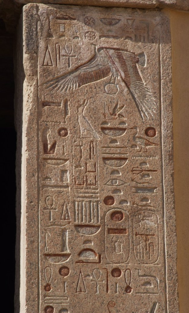 Stock Photo: 4409-38664 Hieroglyph on the walls of the Temple of Hatshepsut.  At the top is a vulture Nekhbet, opening its protective wings.18th Dynasty. New Kingdom. Deir el-Bahari. Egypt.