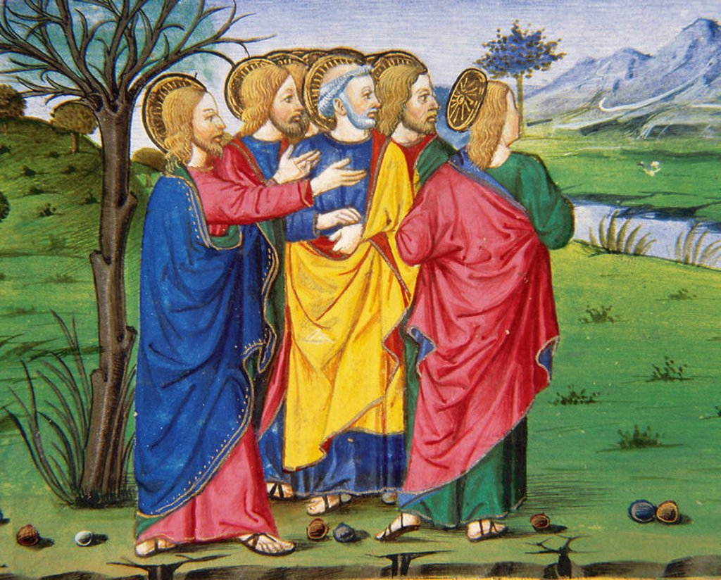 Stock Photo: 4409-42729 Jesus and his disciples, going along the barren fig tree. Codex of Predis (1476). Royal Library. Turin. Italy.
