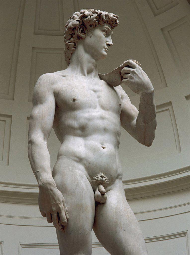 """ARTE RENACIMIENTO. ITALIA. S. XVI. MIGUEL ANGEL (Michelangelo Buonarroti) (1475-1564). Pintor, poeta, escultor y arquitecto italiano. """"DAVID"""" (1501-1505). Fue colocada ante el edificio de la Signoria. Museo de la Academia. Florencia. : Stock Photo"""