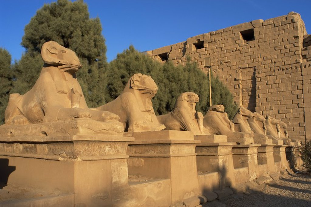 Stock Photo: 4409-44240 Egyptian Art. Karnak Temple. Avenue of sphinxes with ram's head (symbol of the god Amon). Built during the reign of Ramses II. 19th Dynasty. New Kingdom. Around Luxor. Egypt.