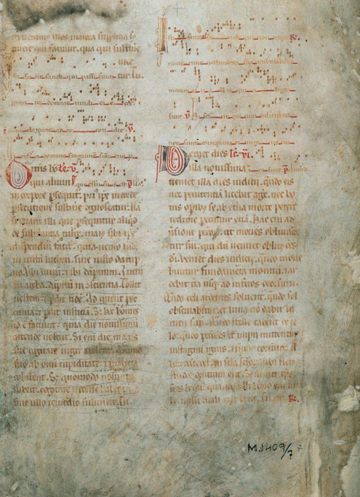 """Stock Photo: 4409-47429 HISTORIA DE LA MUSICA. SIGLO XIII. """"CANTO GREGORIANO"""". Folio de un pergamino catalán del s. XIII."""